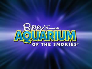 Aquarium_AD