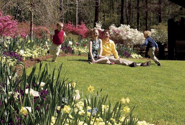 Scenic Spring 057
