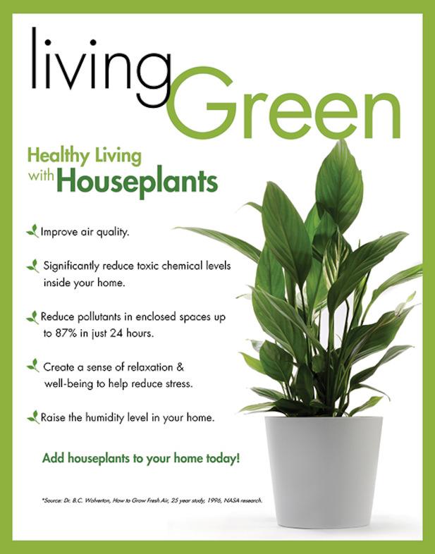 houseplant-benefits